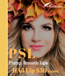 Get smooth and plump lips with the HA5 smooth and plump lip system